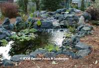 photo of pond & waterfall installation in Minneapolis Mn.