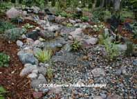 photo of pond & waterfall installation in Minnetonka MN. click to enter gallery
