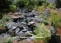 dellwood MN. pond & waterfall installation photo